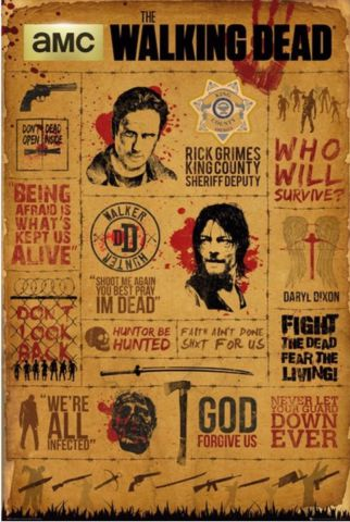 The Walking Dead Infographic Maxi Poster by GB Eye FP4173
