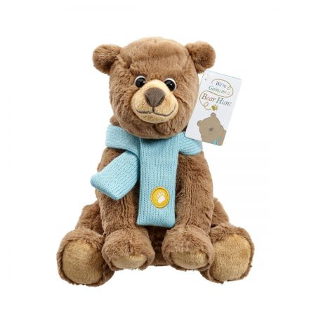 We're Going on a Bear Hunt Soft Toy 20cm by Rainbow Designs BH1822
