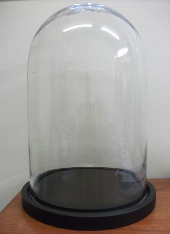 Glass display dome MDF base GW58