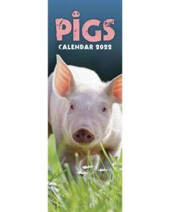 Pigs Slim Calendar 2022 by Carousel Calendars 220486