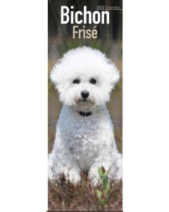 Bichon Frise Slim Calendar 2022 by Avonside Publishing 220727