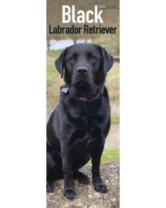 Black Labrador Retriever Slim Calendar 2022 by Avonside Publishing 220745