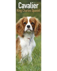 Cavalier King Charles Spaniel Slim Calendar 2022 by Avonside Publishing 220774