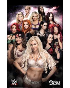 WWE Divas Maxi Poster by GB Eye SP1334