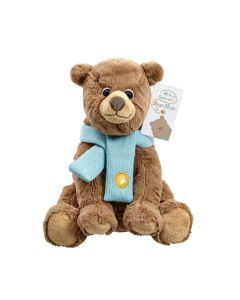 We're Going on a Bear Hunt Soft Toy 23cm by Rainbow Designs BH1822