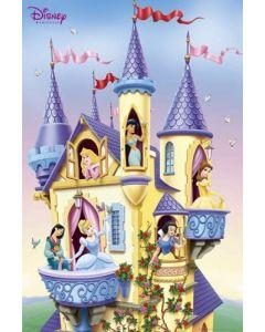Disney Princesses in a castle poster FP1356