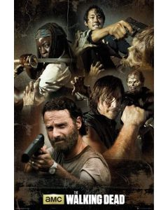 The Walking Dead Infographic Maxi Poster by GB Eye FP3734