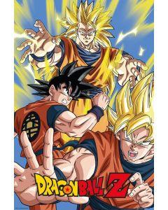 Dragon Ball Z Goku Poster FP4011